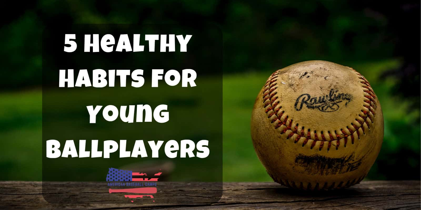 American Baseball Camps — 5 Healthy Habits For Young Ballplayers