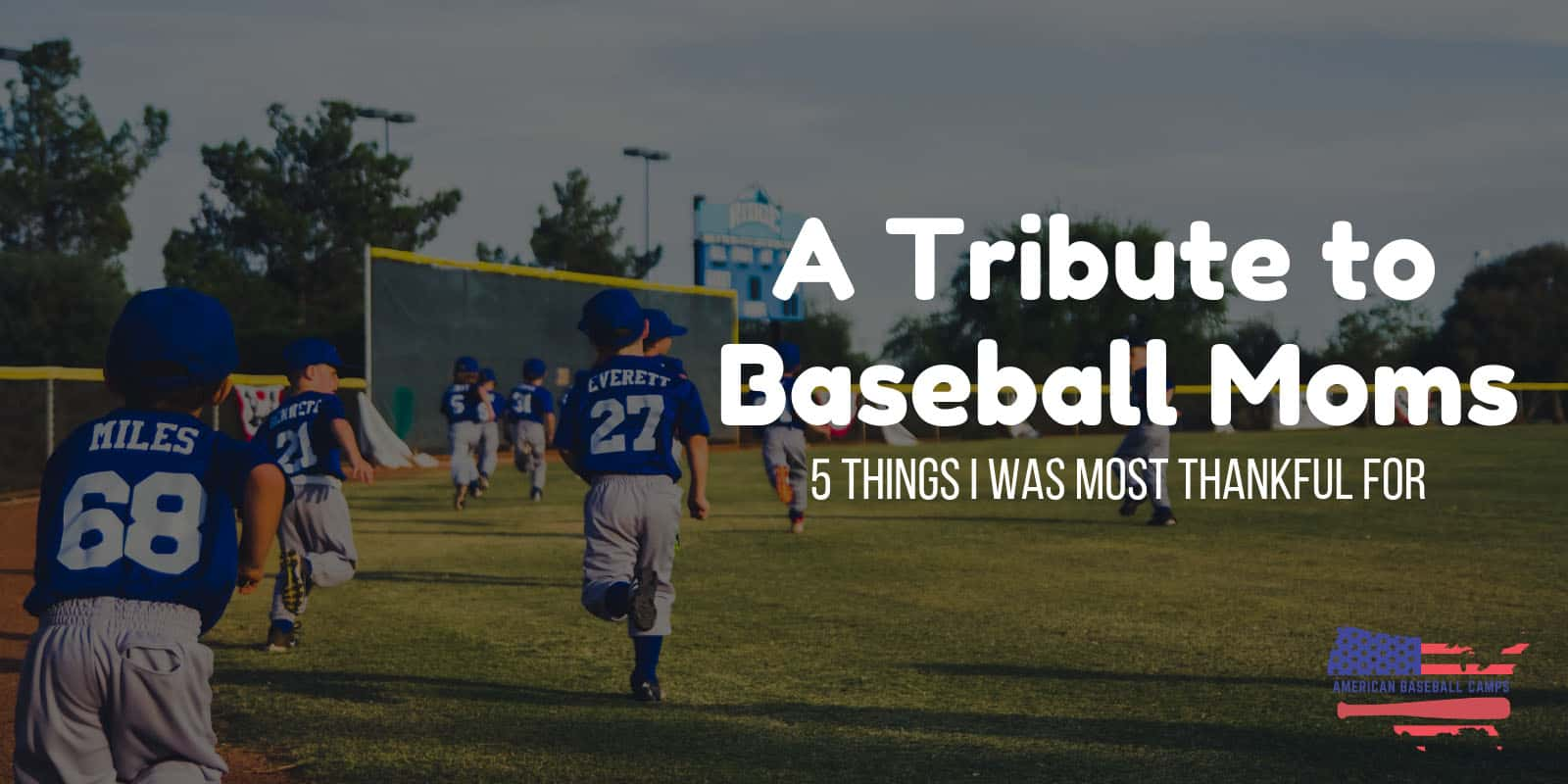 A TRIBUTE TO BASEBALL MOMS — 5 Things I Was Most Thankful For