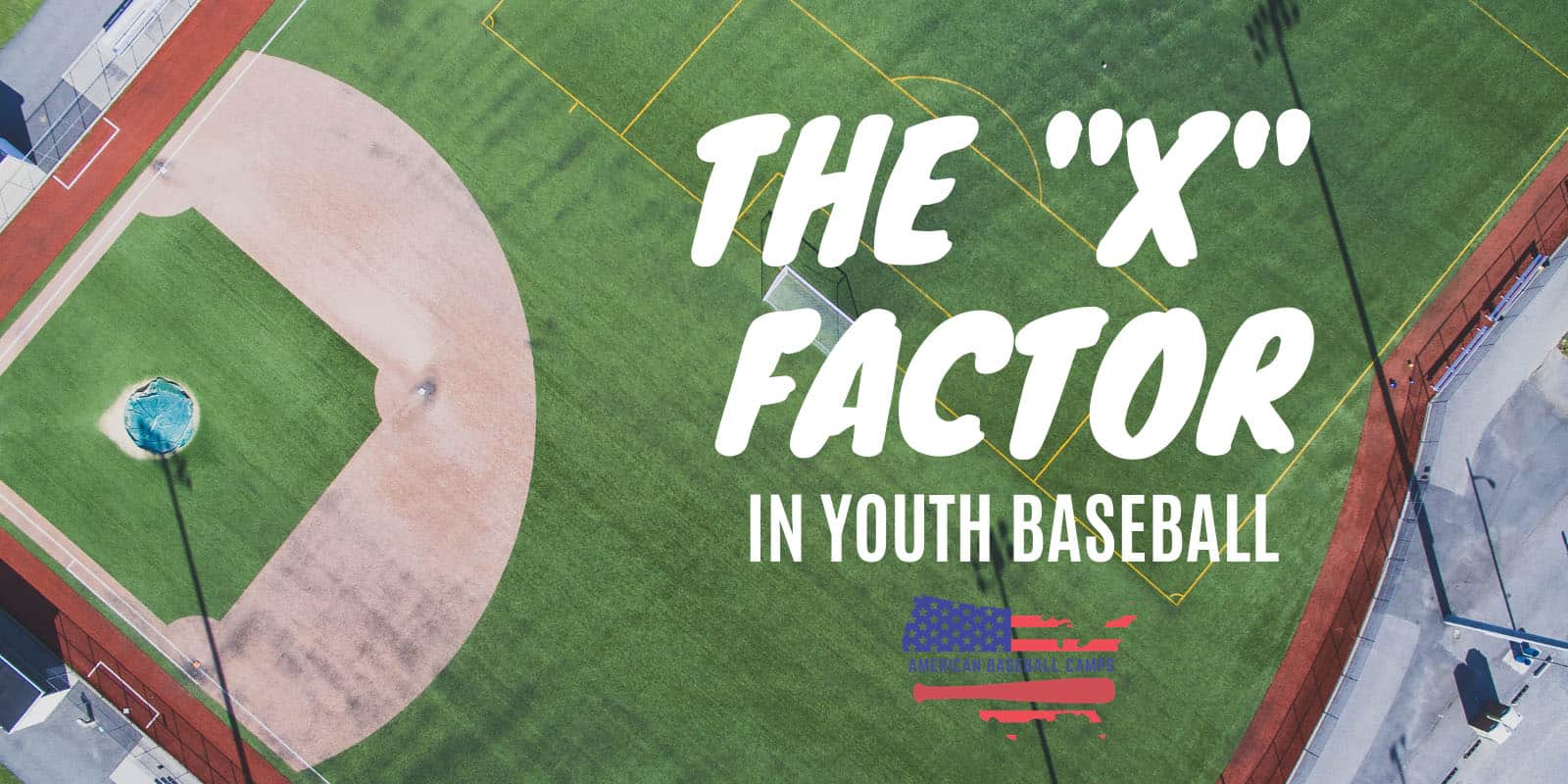 "The ""X FACTOR"" In Youth Baseball"