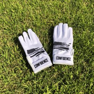 American Baseball Camps batting gloves